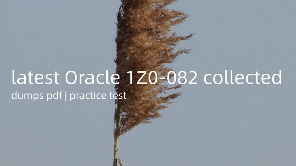 latest Oracle 1Z0-082 collected